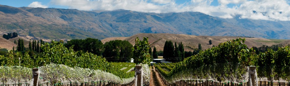 <p>New Zealand's Finest Wines - The 2018 Official List</P>